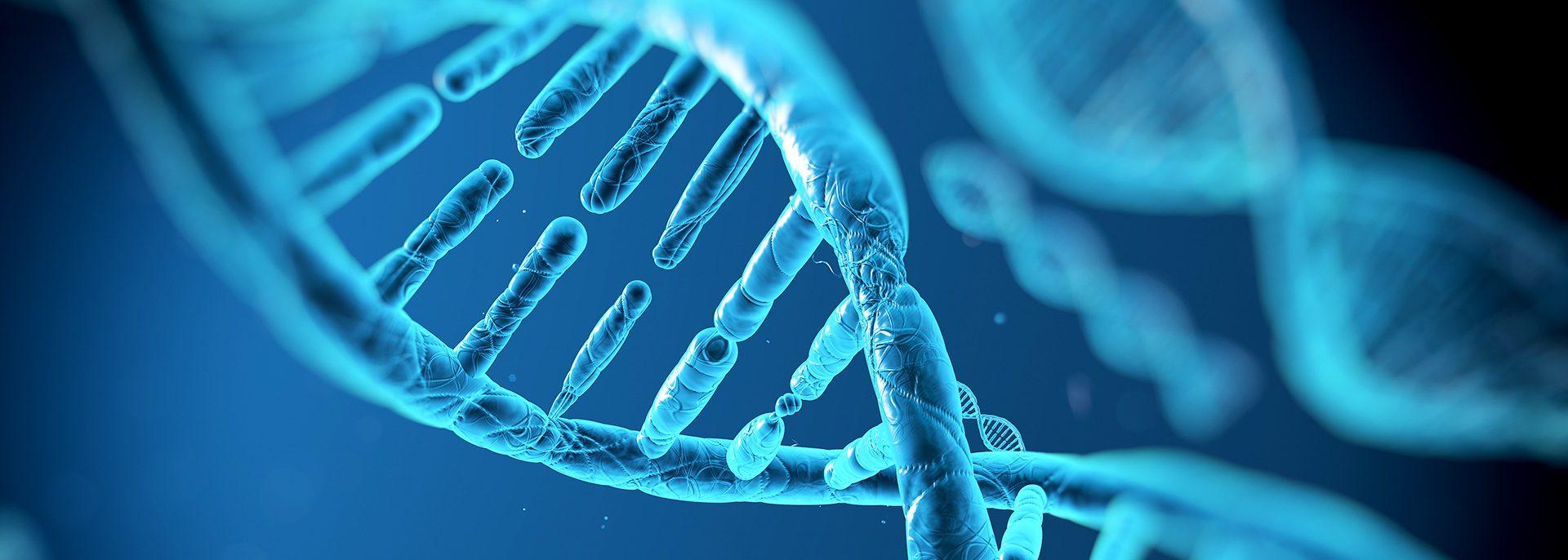 L-lysin jedinečná molekula na podporu erekcie
